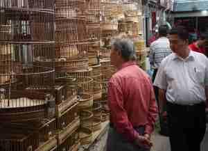 Last few cages in the Birdmarket