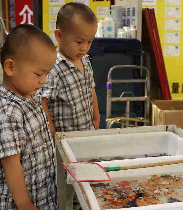 Qingdao Boys & fish