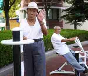Wrinklie exercise park