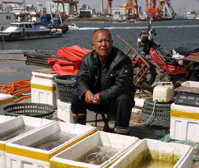 Fisherman Qingdao port