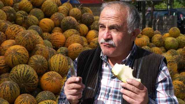 Melon seller