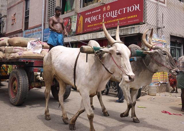 Chennai Old town